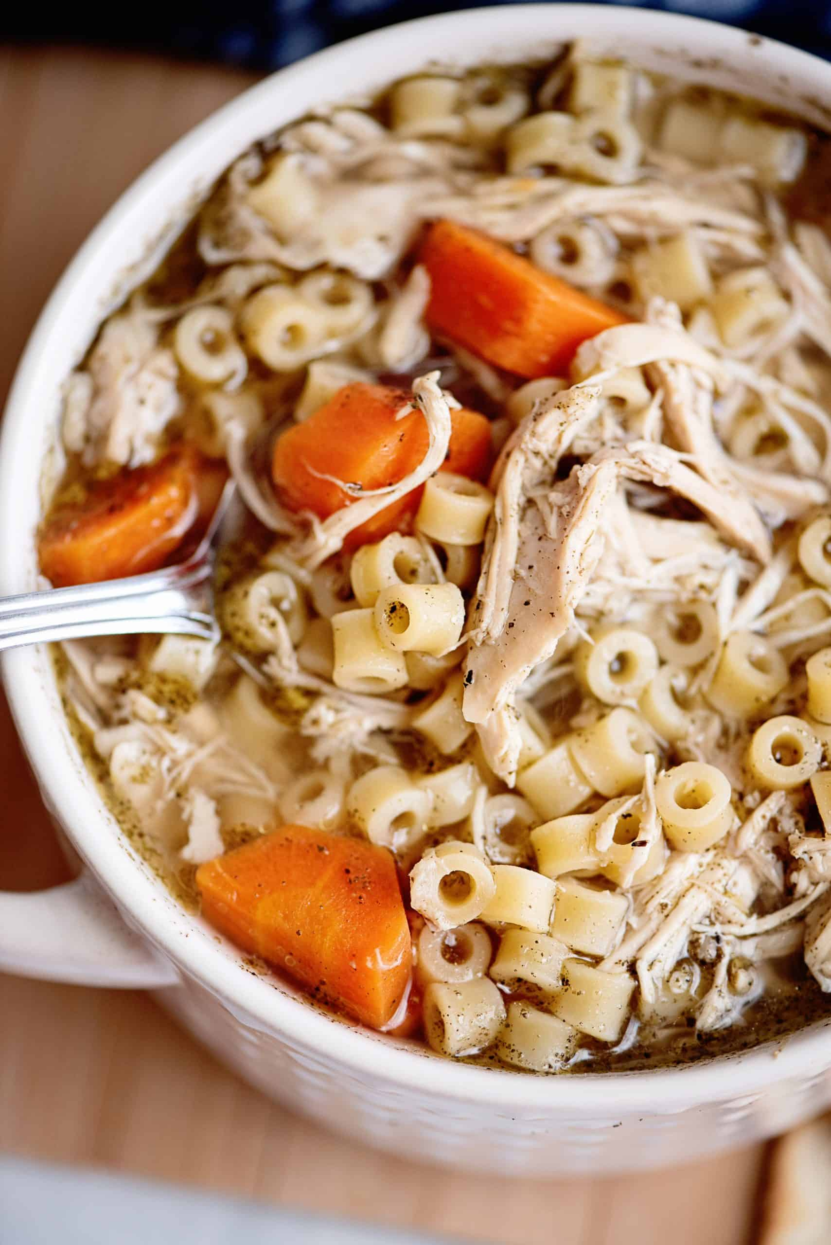 spoonful of Chicken Noodle soup