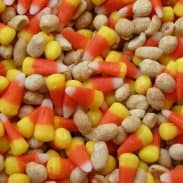 Pay Day Candy Mix (And The Varying Degrees Of Fits Thrown In The South)