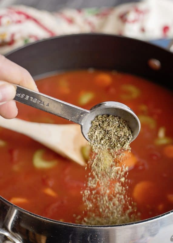Seasoning Spaghetti Lover's Soup