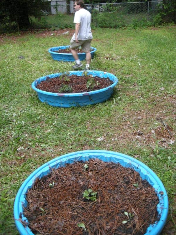 Raised Bed Gardens in 30 minutes - Southern Plate