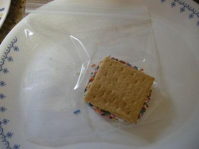 Almost No Sugar Ice Cream Grahamwiches