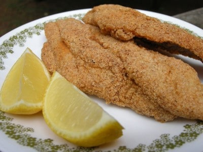 Fried catfish southern plate for Cornmeal fried fish