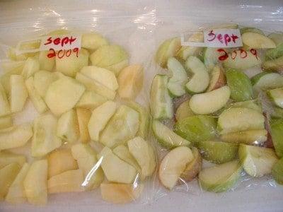 apples 073