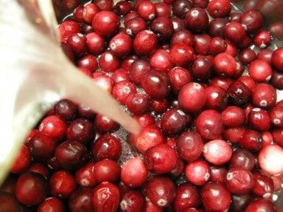 cranberry stuff 007