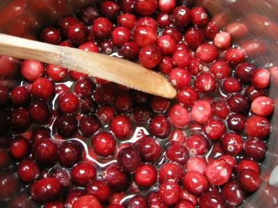 cranberry stuff 010