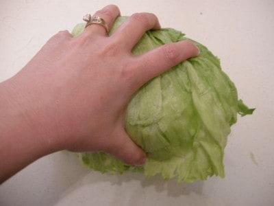 lettuce 026
