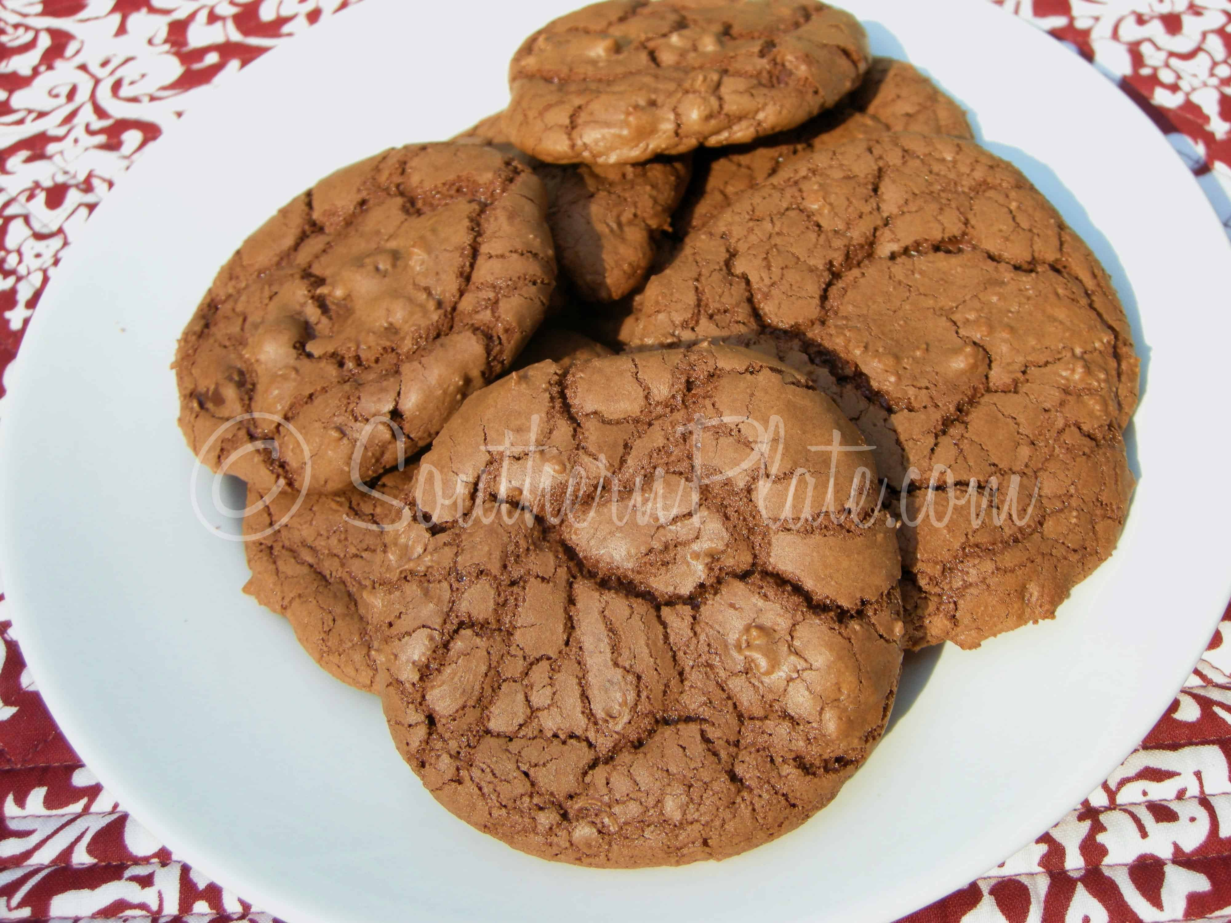 Chocolate Chocolate Chip Cookies – How To be The BEST _____ Ever ...
