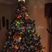 Quickie Look at my Christmas Tree :)