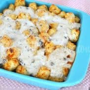 Tater Tot Casserole – And Going North