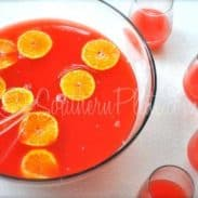 Simple Party Punch (Can be made Sugar Free!)
