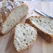 Easy Dutch Oven Bread (and sweater vest dreams)