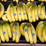 Money Saving Tip: Go Bananas!