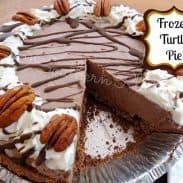 Frozen Turtle Pie