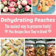 Dehydrating Peaches