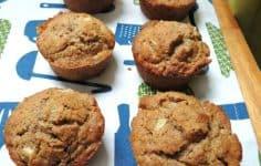 Quick N Tasty Apple Bran Muffins
