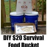 DIY 20 Food Bucket