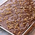 *NEW* Big Batch Brownies - Fudgey and deeply chocolate, these brownies pay homemage to cafeteria ladies in days of old and make plenty to share!
