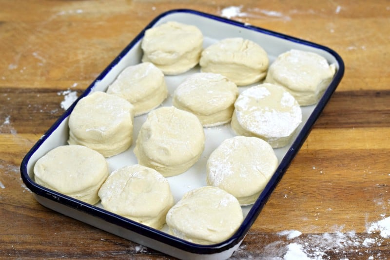 Preston Rolls from SouthernPlate.com - Mix up this dough on the weekends and keep it in your fridge for delicious hot yeasty rolls throughout the week!