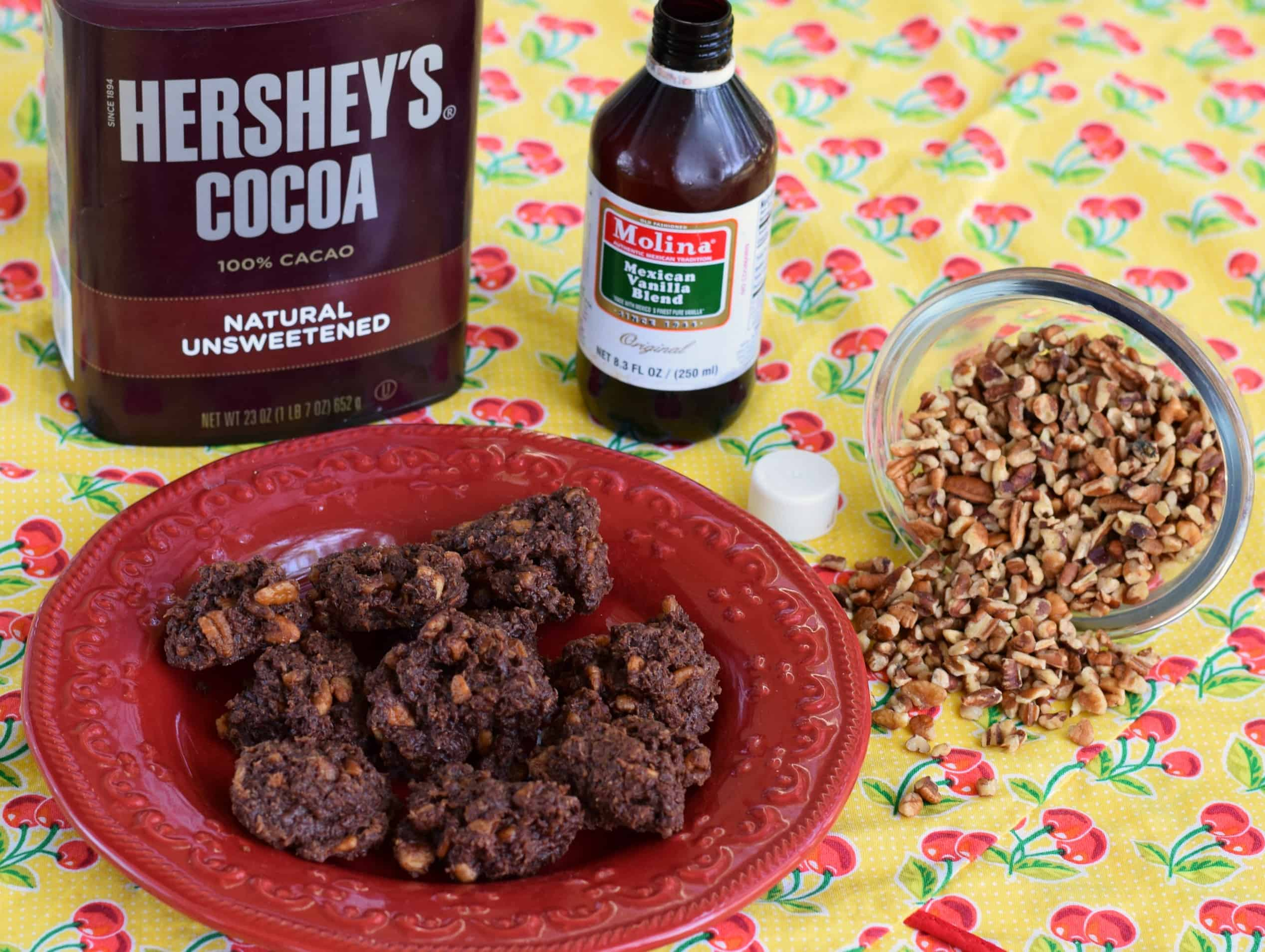 Low Carb Chocolate No Bake Cookies | Southern Plate