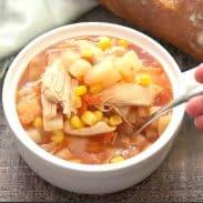 Shortcut Chicken Stew
