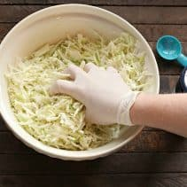 sauerkraut squeezing cabbage