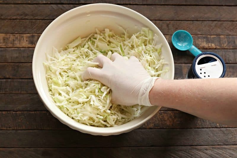 sauerkraut squeezing cabbage