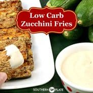 Low Carb Zucchini Fries – YUM!