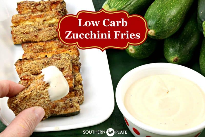 Low Carb Zucchini Fries - YUM!