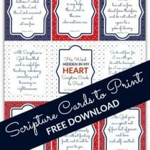 Southern Plate Scripture Cards July 2017_450c