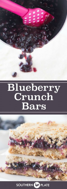 Blueberry Crunch Bars from SouthernPlate