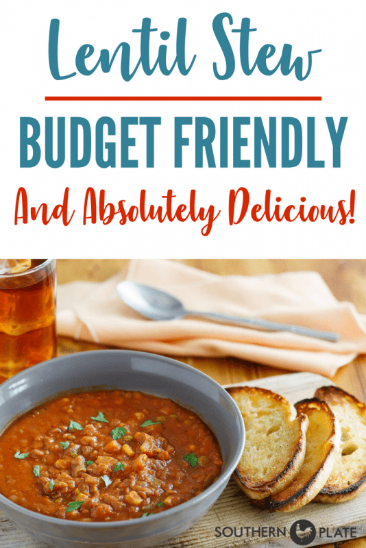 Budget Friendly & Delicious Lentil Stew