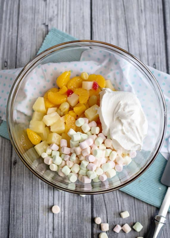 Mixing Up Five Cup Fruit Salad