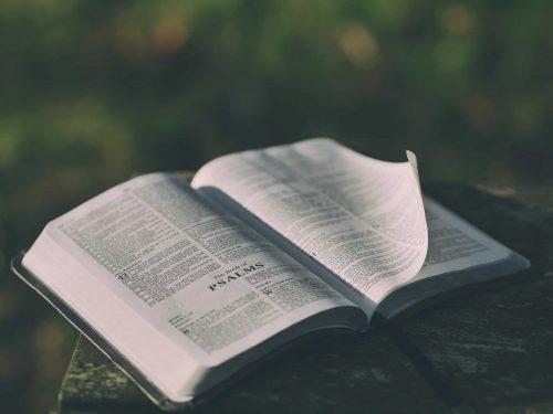 Genesis 1-3 Bible Study