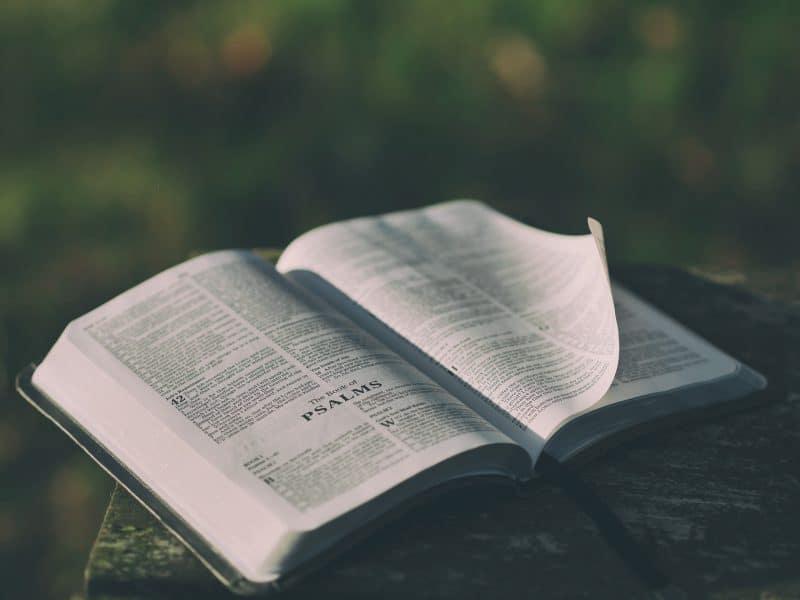 Genesis 27-29 Deep Diving Bible Study
