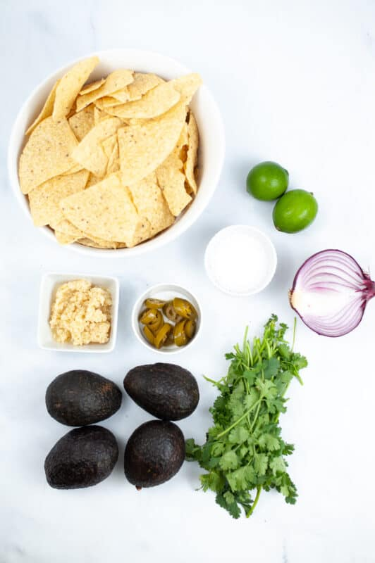 guacamole ingredients, onion, lime, garlic avocado, cilantro